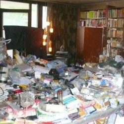 Wohnungsräumung: Müllberg Wohnzimmer