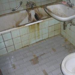 Wohnungsräumung: Badezimmer dreckig